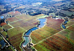 Image of this Estate Winery